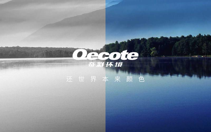 浙江奇彩环境科技股份有限公司